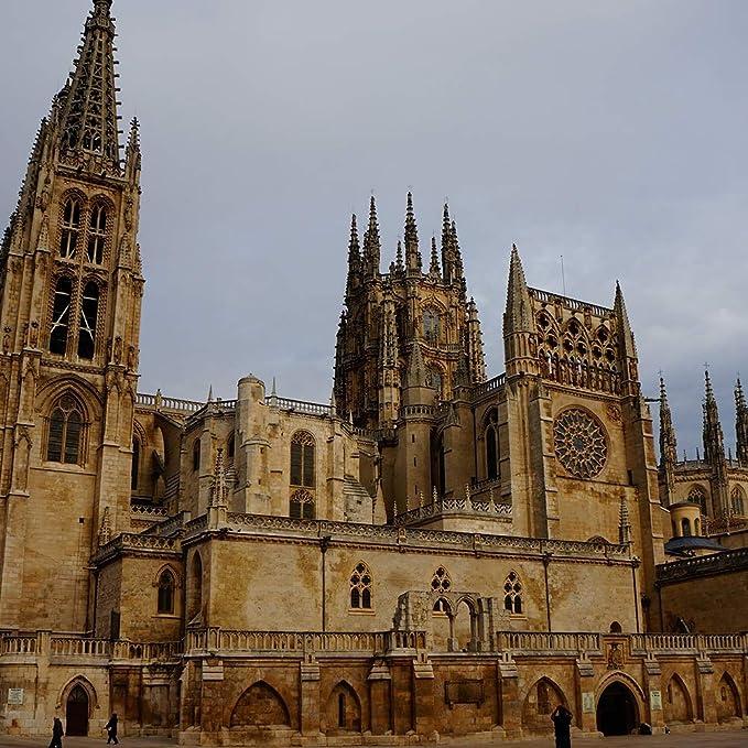 3D Metal Puzzle España Arquitectura de la Catedral de Burgos Ensamble Kits de Modelos DIY Corte por láser Ensamblar Rompecabezas Juguete de Regalo: Amazon.es: Deportes y aire libre