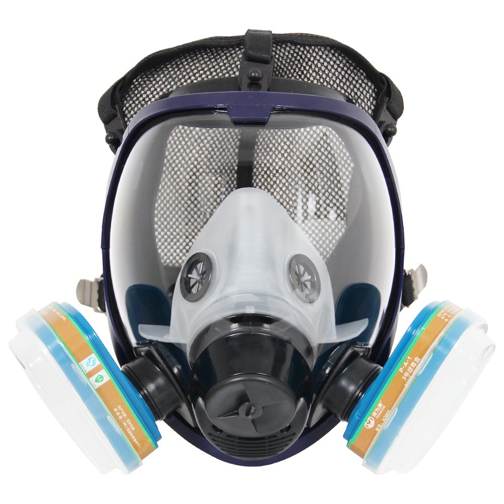 Complete Suit Trudsafe 6800 Painting Spraying Full Face Gas Chemical Mask Respirator, Dust Mask, 2 Kinds of Connectors, Good Tightness, Filters Included by Trudsafe