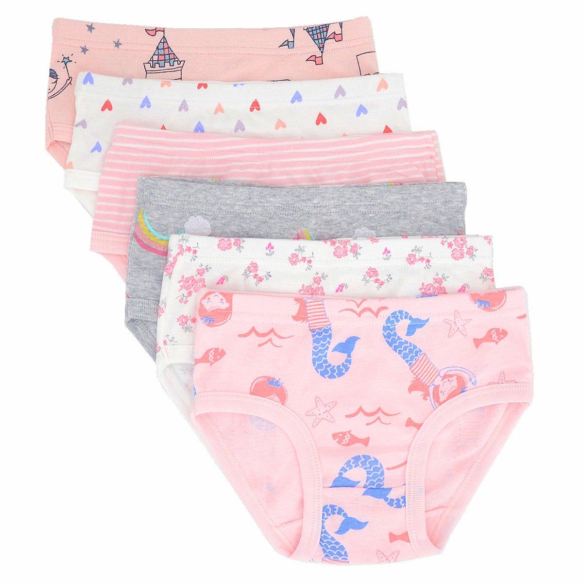 Toddler Little Girls' Briefs Panties Kids Cotton Underwear Set 6 Pack (4-5 Years, Style2)