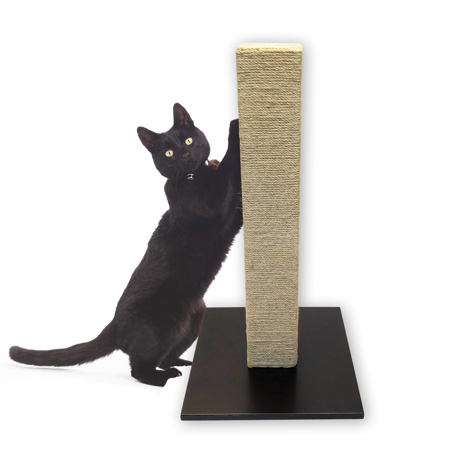 Pet Craft Supply 29'' Tall Square Cat Scratching Post Natural Sisal Wrapped Cat Tree with Wooden Base by Pet Craft Supply