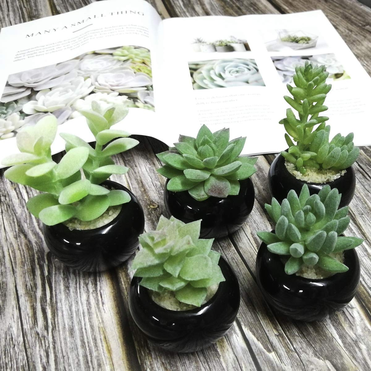 Faux Greenery 2 pcs Set 3.5 x 6.7(D x H) Tuokor Small Artificial Plants in Ceramic Pots