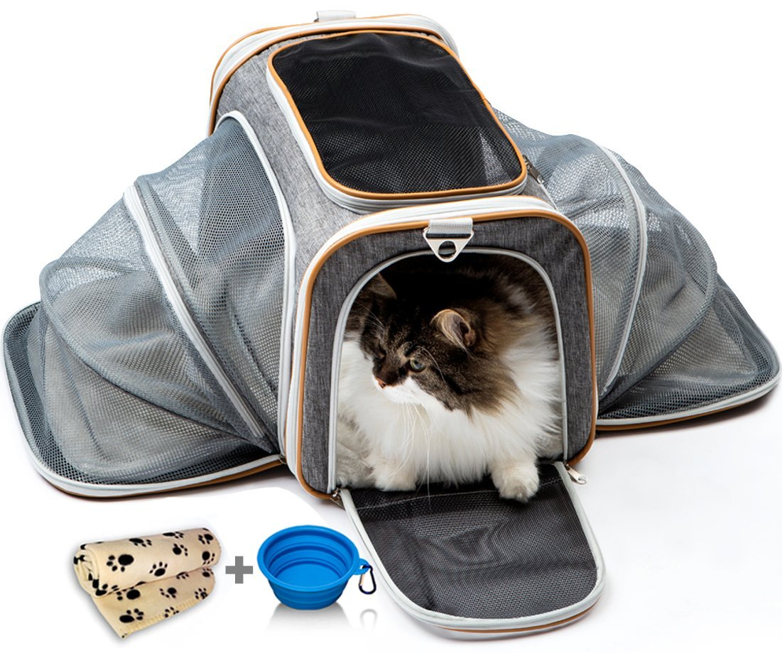 PETYELLA Luxury Pet Carrier + Fleece Blanket & Bowl - Airline Approved Innovative Design - Lightweight Dog & Cat Carrier by PETYELLA (Image #9)