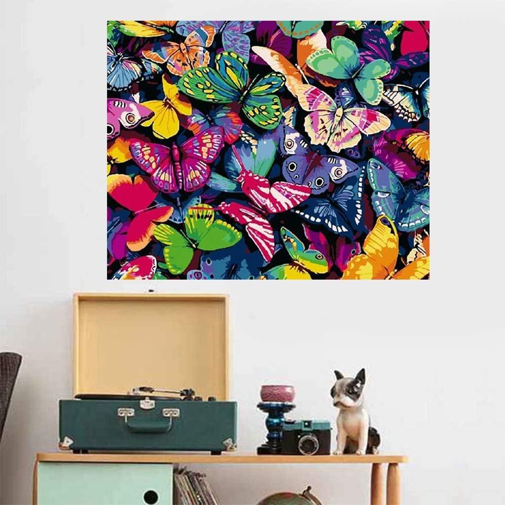 JIACUO Mariposa Pintura de Bricolaje por n/úmeros Cuadro de Arte de Pared Moderno para ni/ños y Adultos