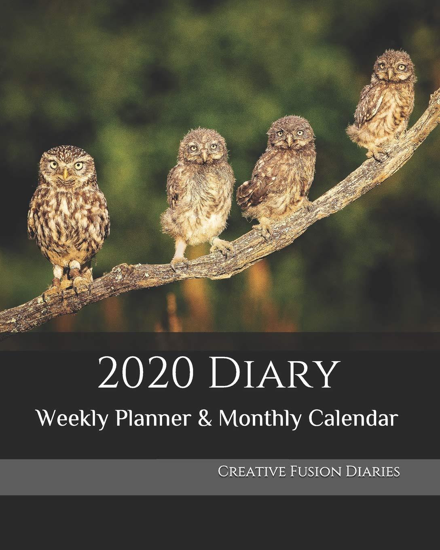 British Birds of Prey Calendar 2020 Desk Top A5