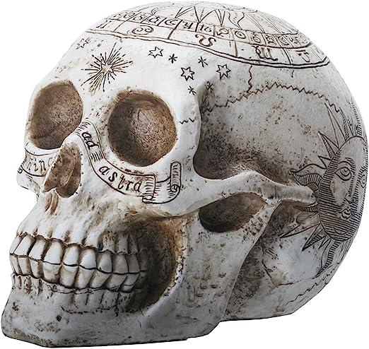 resin skull with astrology engravings