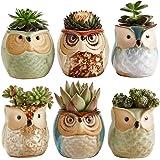 Sun-E 2.5 Inch Owl Pot Ceramic Flowing Glaze Base Serial Set Succulent Plant Pot Cactus Plant Pot Flower Pot Container…