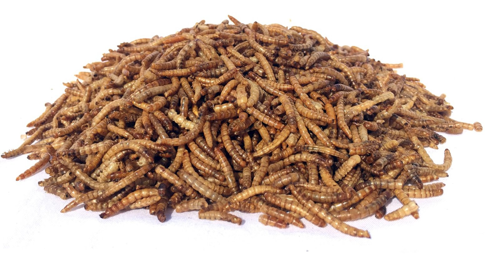NaturesPeck Mealworm Time Dried Mealworms from (5 lbs) - For Chickens & Wild Birds
