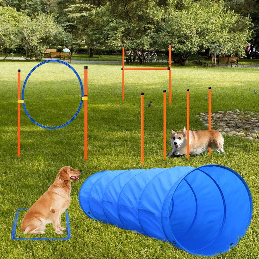 XiaZ Dog Agility Equipments, Obstacle Courses Training Starter Kit, Pet Outdoor Games for Backyard Includes Dog Tunnel, Jumping Ring, High Jumps, 4 Pcs Weave Poles, Pause Box with Carrying Case