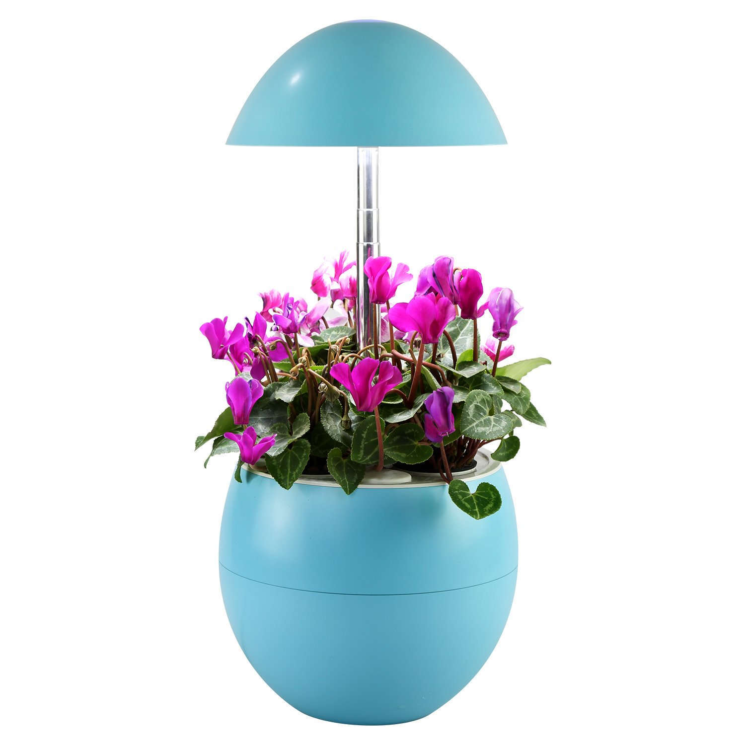 Decorative Indoor Garden Lamp Hydroponic Self Watering System, Complete Planter Pod Kit, Seeds & Led Light Grows Herbs, Flowers, Succulents in Kitchen or Any Room by Domestic Diva LA (Blue) by Domestic Diva LA