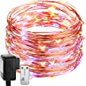 DecorNova Fairy Plug in Firefly Copper Wire String Light