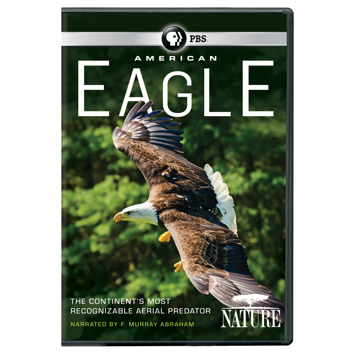 Amazon nature american eagle dvd 2016 movies tv biocorpaavc