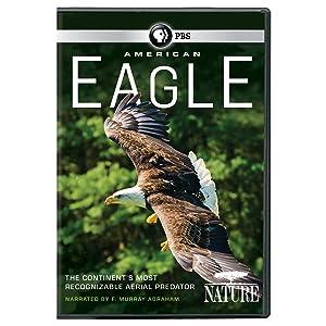 NATURE: American Eagle DVD (2016)