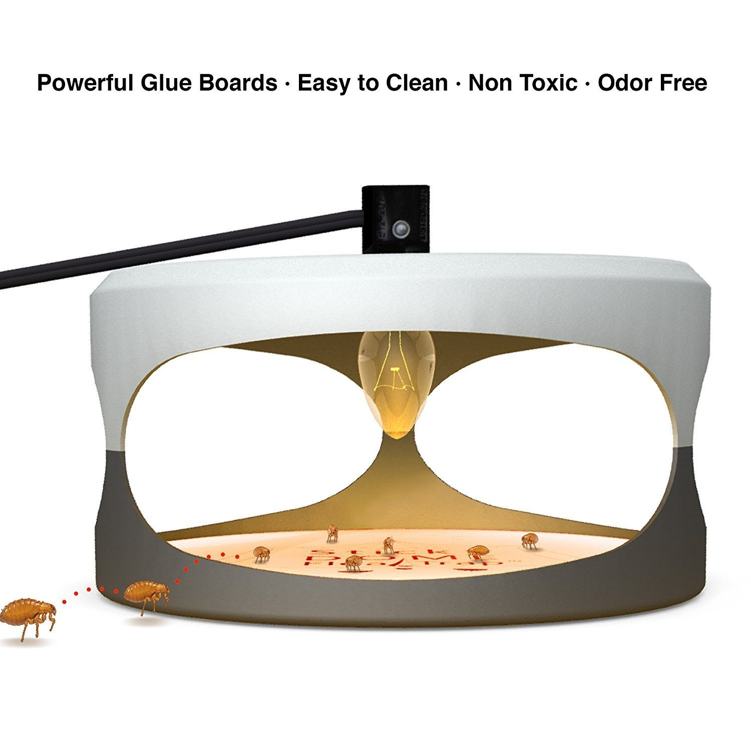 Hoont Indoor Plug-in Electric Sticky Flea Trap with Light and Heat Attracter (Includes 5-Adhesive Glue-Boards) / Eliminates Fleas, Bed Bugs, Flies, Etc. - For Residential and Commercial Use [UPGRADED]