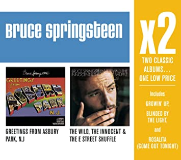 Bruce springsteen x2 greetings from asbury parkthe wild x2 greetings from asbury parkthe wild innocent the e street shuffle m4hsunfo