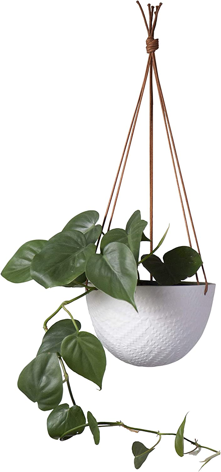 White Hanging Ceramic Planter – 7.6 Inch Wide with 3 Ropes for Indoor or Outdoor Plants – Unglazed – by Cantina