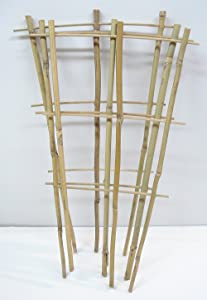 Natural Color Bamboo Trellis 18 inches Tall - Quantity 3