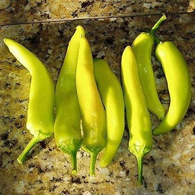 Hungarian Hot Wax Pepper Seeds by Pepper Joe's - 10+ Seeds Per Pack : Garden & Outdoor