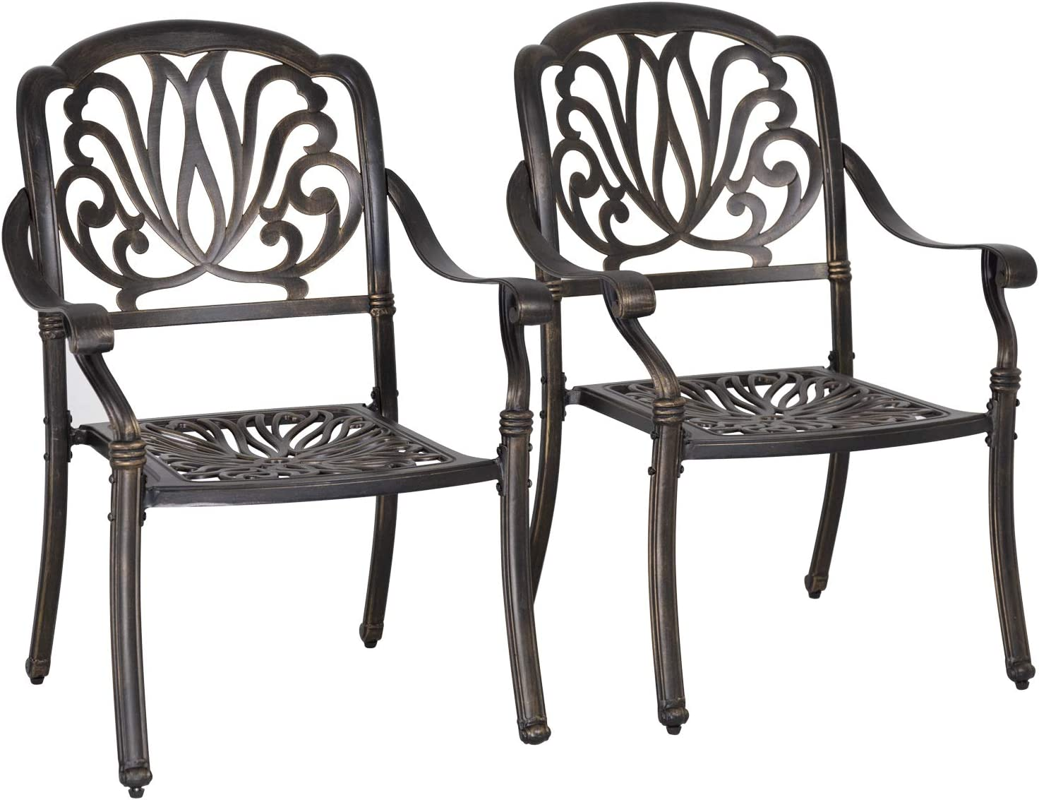 FDW Patio Chairs Dining Chairs Set of 2 Wrought Iron Patio Furniture Outdoor Chair Patio Furniture Chat Set Weather Resistant