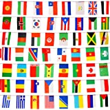 SNNplapla 100 Countries Flags 82ft International Flags Bunting Banner for Party Decorations,Olympics,Grand Opening,Bar,Sports Clubs,School Events,Cultural Studies and More