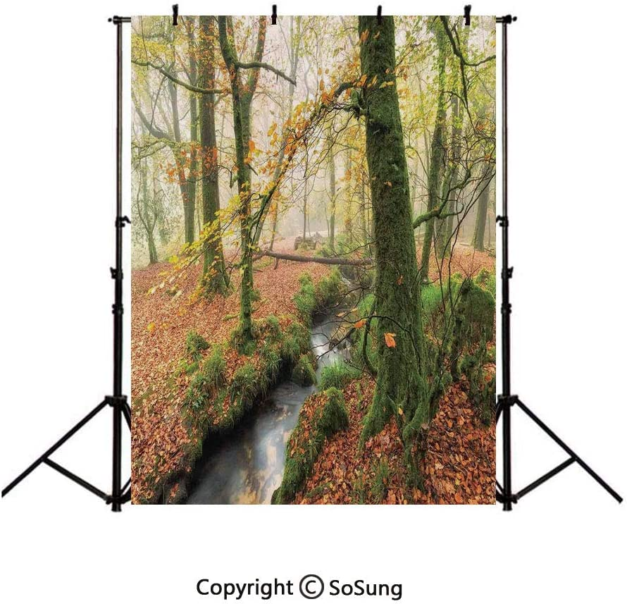 7x10 FT Woodland Vinyl Photography Backdrop,Misty Autumn Woodland Stream at Golitha Falls on Bodmin Moor in Cornwall Background for Photo Backdrop Baby Newborn Photo Studio Props