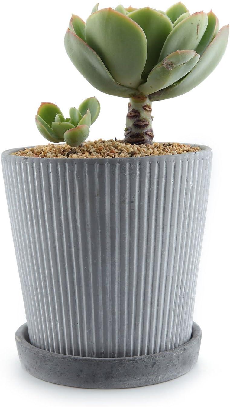 Pot pour Cactus Plante Planteur Cache Pot Jardini/ère Contenant D/écoration de Maison Bureau Cadeau pour Anniversaire Mariage ComSaf 13.3CM Pot de Succulent avec Plateau en Ciment Gris