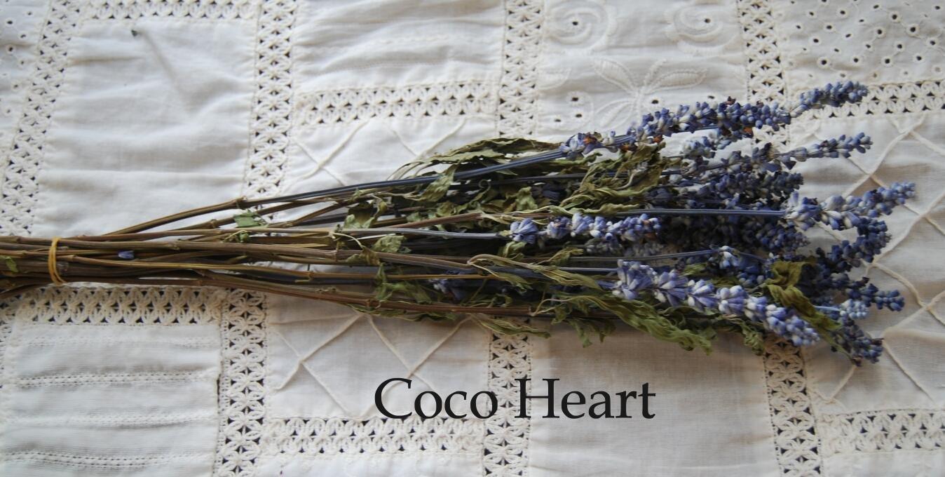 CocoHeartサルビア ブルー