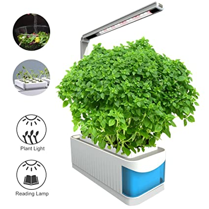 Amazon finether indoor garden kit hydroponic garden kit lamp finether indoor garden kit hydroponic garden kit lamp smart herb gardening kit desk led grow light workwithnaturefo