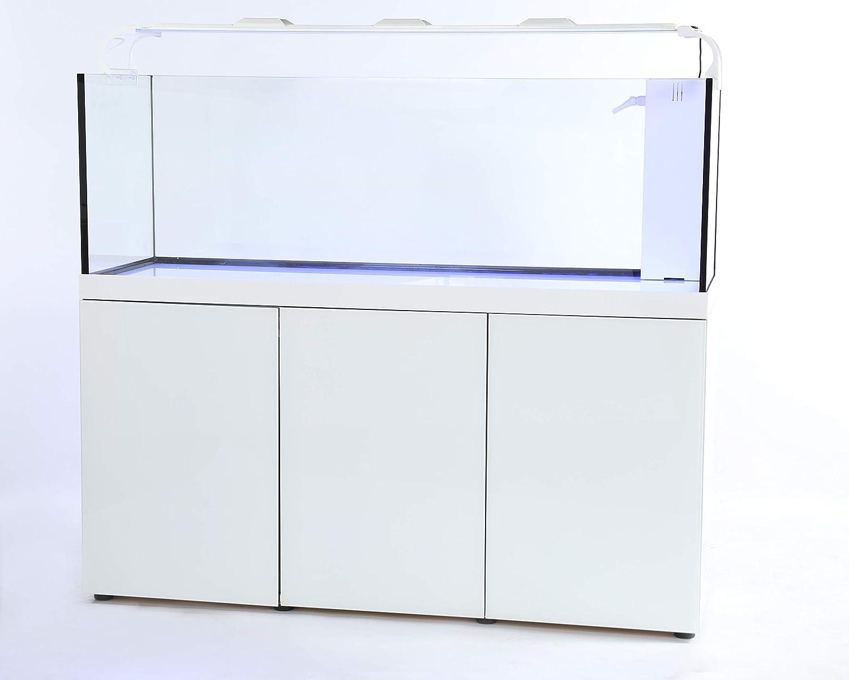 Rimless Glass Aquarium