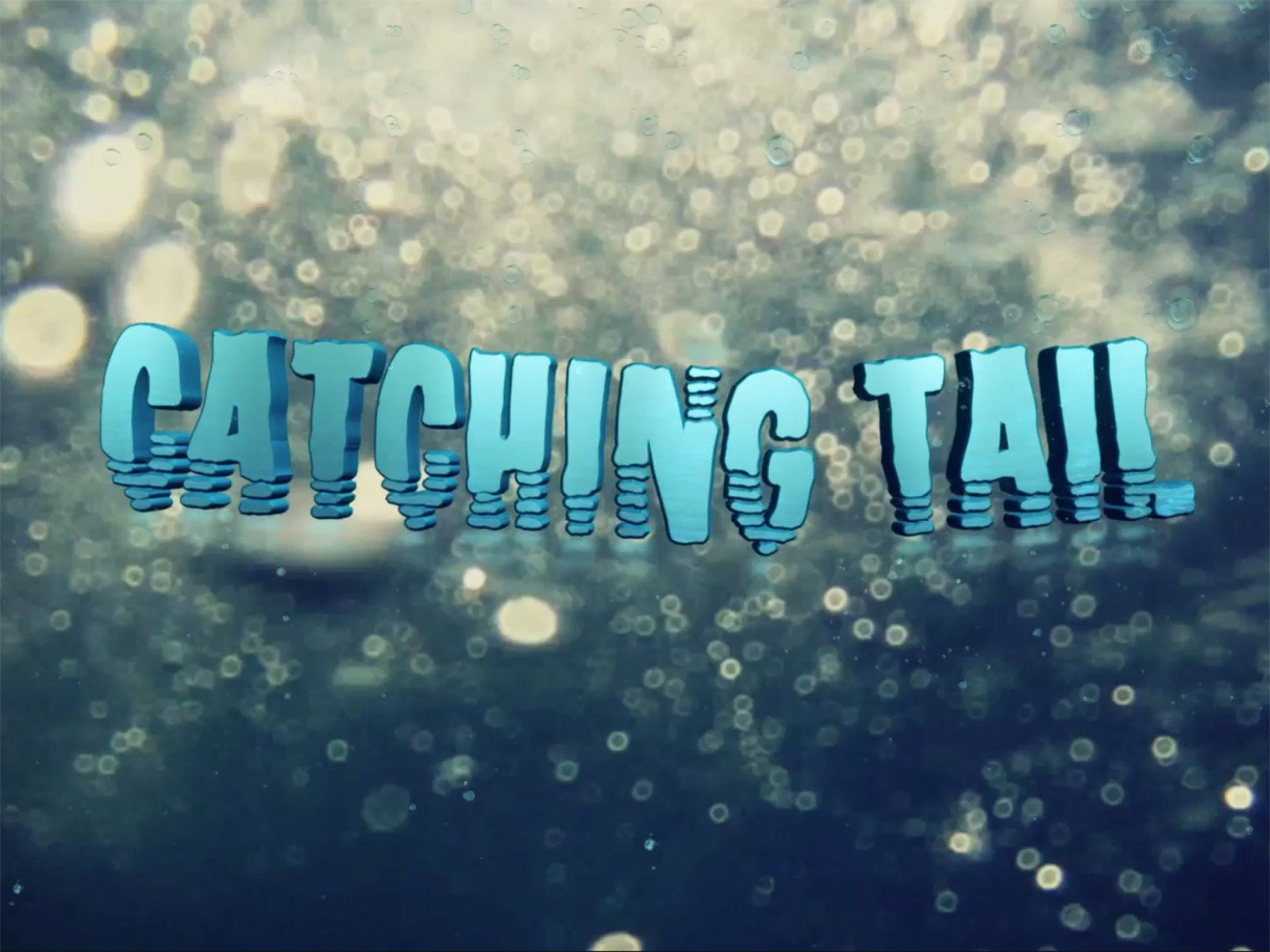 Catching Tail