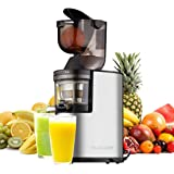 """Juicer Slow Masticating Juicer Extractor, 3"""" Wide Chute Cold Press Juice Machine, 250W AC Motor and Reverse Function, Easy Cleaning, W/ Juicer Jug and Brush, High Nutrient Fruit and Vegetable Juice"""