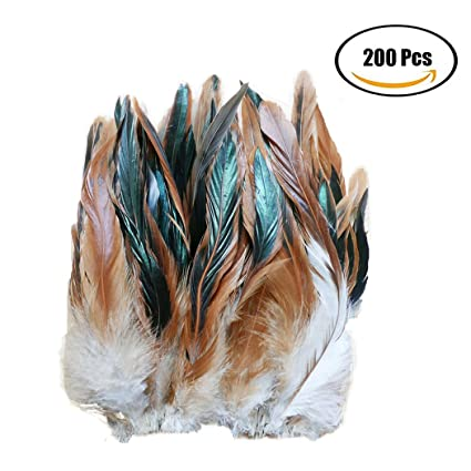 Raylans Nature Rooster Coque 6-8 Tails Feather 200Pcs Purple