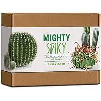 Sow Lush Kit de Semillas de Cactus «Mighty Spiky», para Regalo Todo lo Que Necesitas para Que Puedas Cultivar Tus 5…