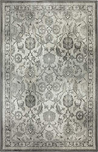 Euphoria New Ross Ash Gray 90259-5913 Karastan 2'4″x7'10″ Area Rug