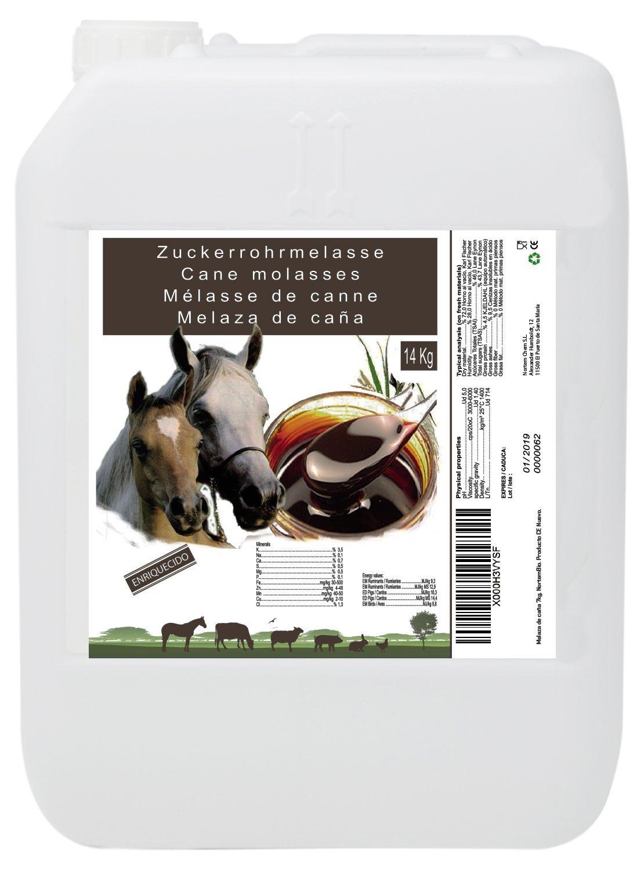 Mélasse de Canne 14 kg, Complément de Haute Valeur Énergétique, Usage Animale, Recommandé pour Les Chevaux. Produit CE. Nortem Biotechnology