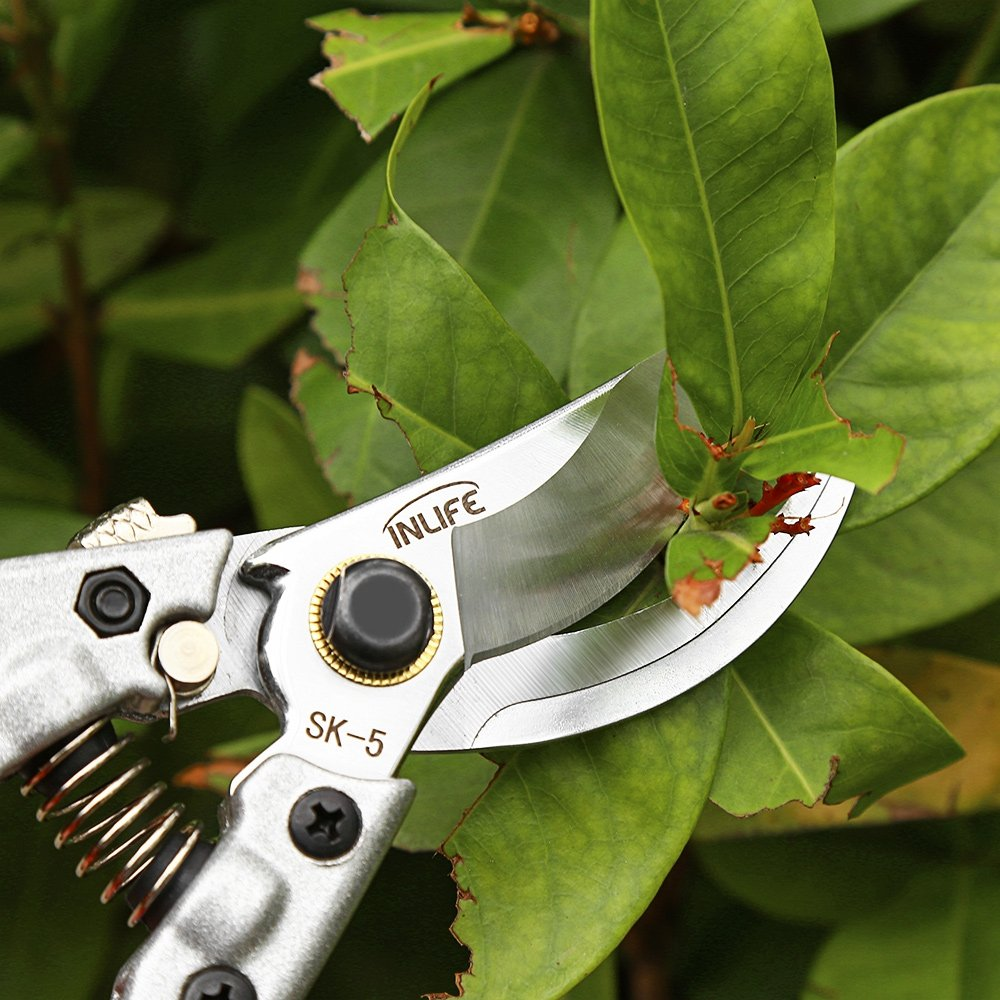 Garden Pruning Shears Grafting Tools Professional Safe To Use (Single) by DAMAIFENG (Image #7)
