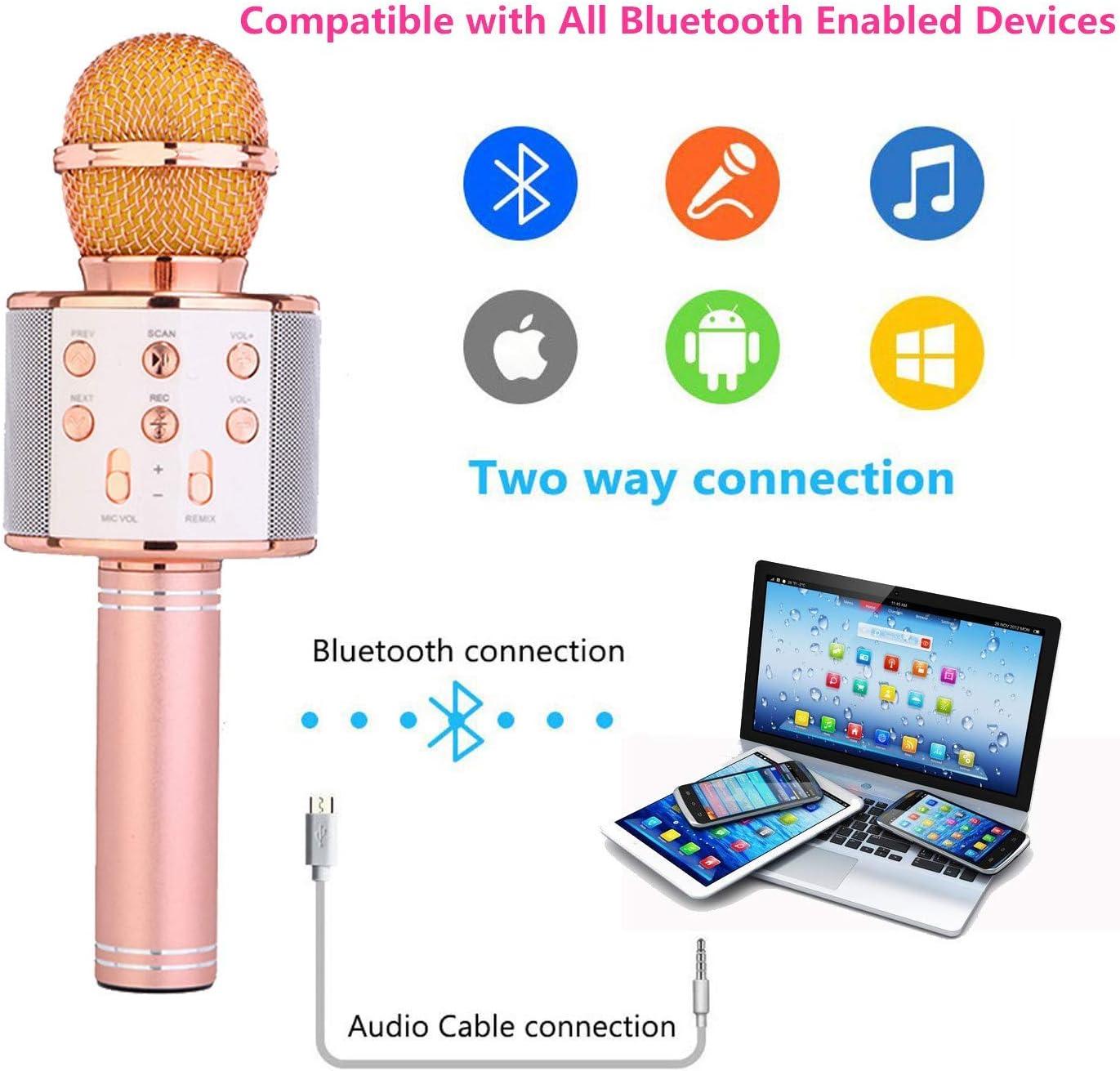 Altavoz Bluetooth Reproductor de M/úsica Canto Grabadora para el IPHONE Android IPAD Smartphone PC Bluetooth Karaoke Micr/ófono,Micr/ófono Karaoke,Inal/ámbrico Micr/ófono Karaoke C