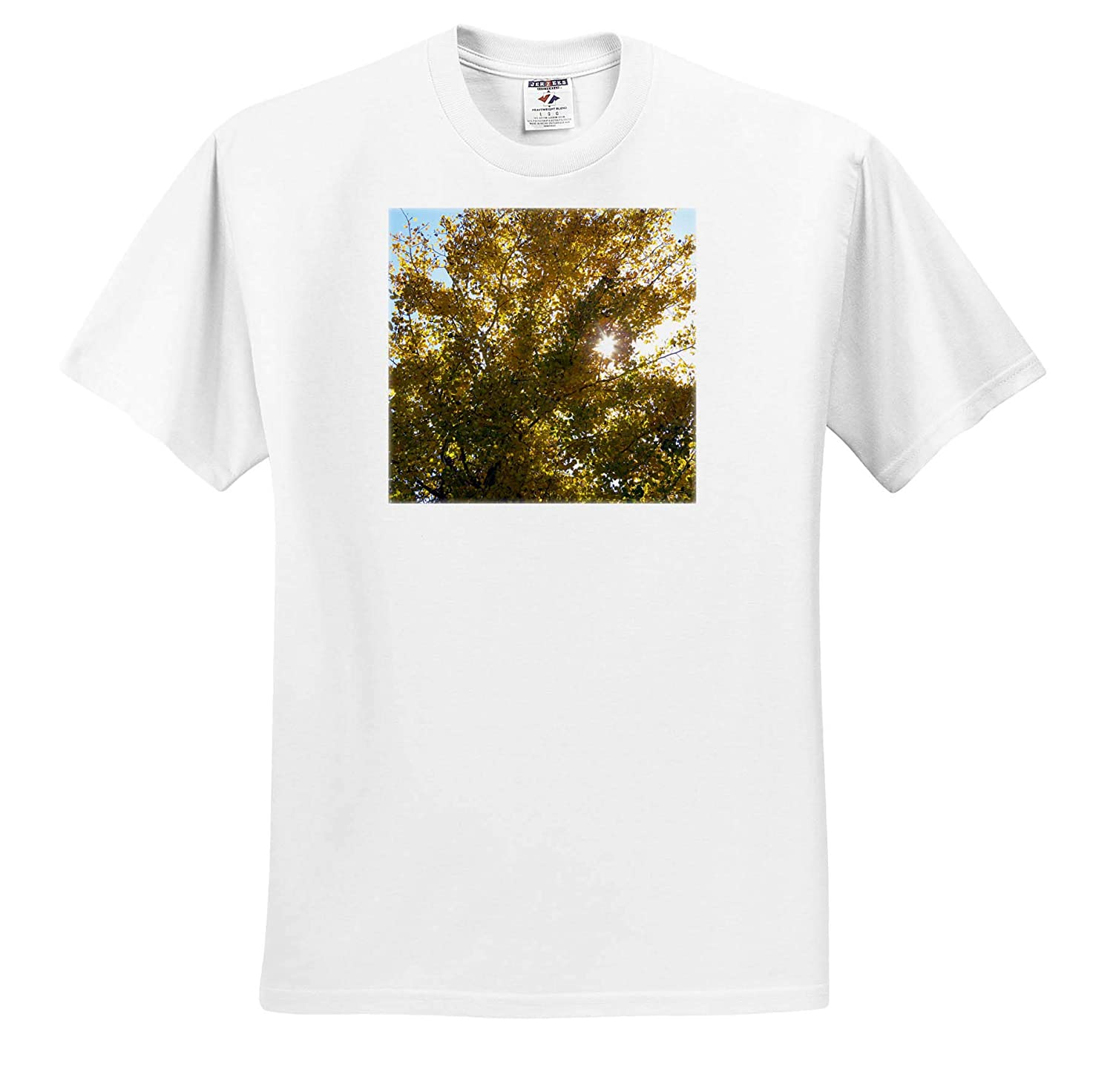 Starlight Between The Leaves on The Fall Golden Tree ts/_319021 Adult T-Shirt XL 3dRose Jos Fauxtographee- Starlight