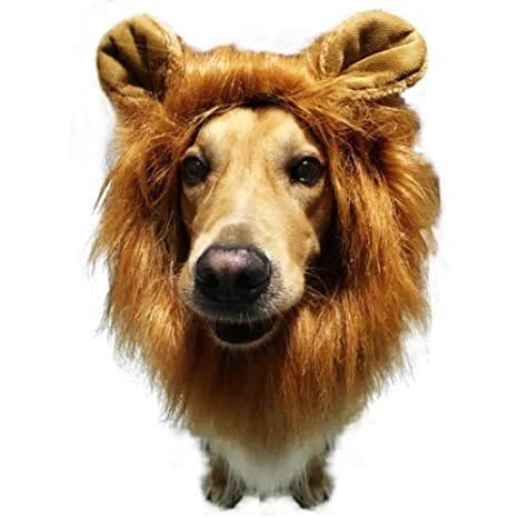 mewtogo León Mane peluca disfraz de gato divertido perro - gato ...