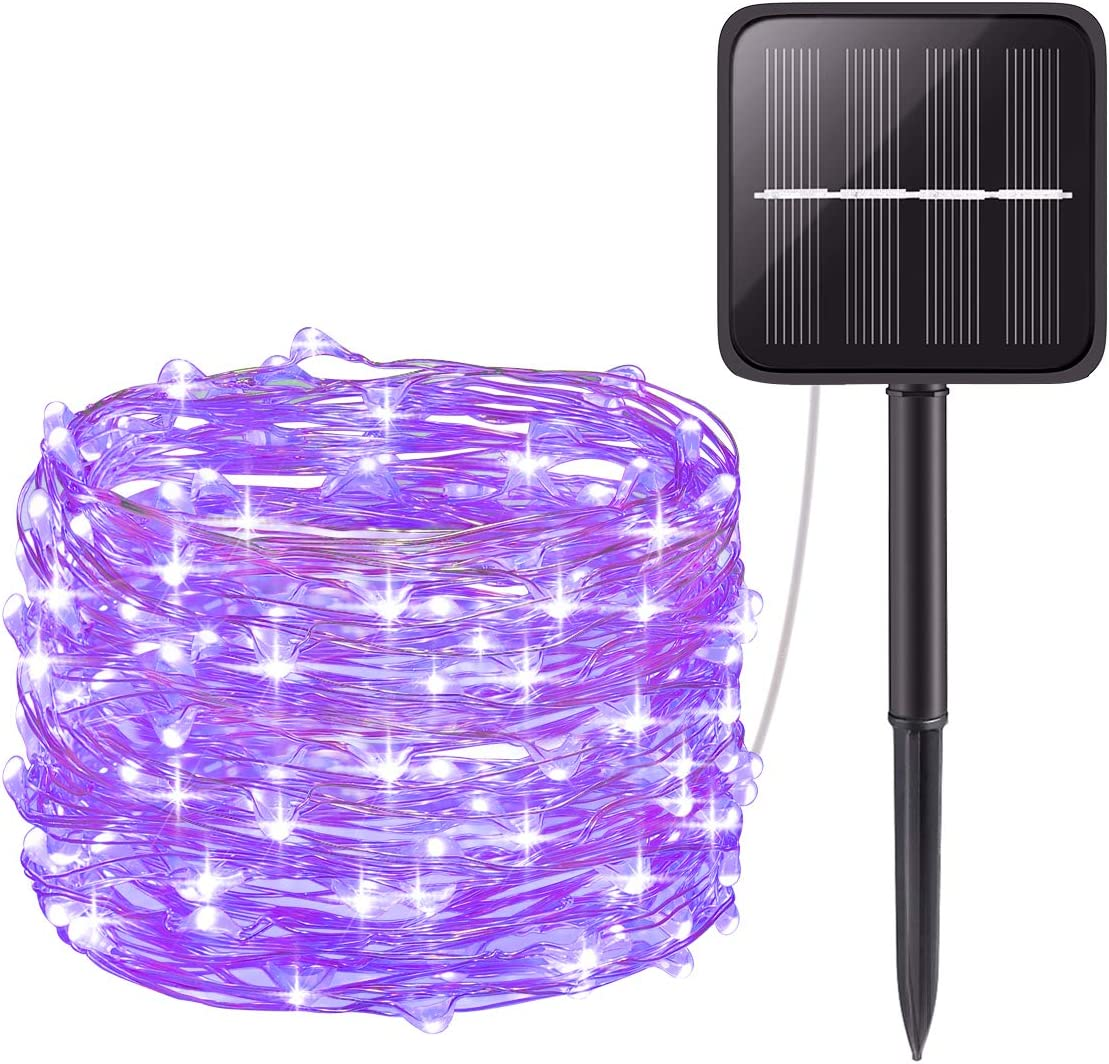 AMIR Solar Powered String Lights, Mini 100 LED Copper Wire Lights, Fairy Lights, Indoor Outdoor Waterproof Solar Decoration Lights for Gardens, Home, Dancing, Party, Christmas (Purple)
