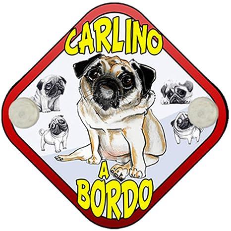 Placa bebé a bordo Carlino a bordo perro a bordo: Amazon.es ...