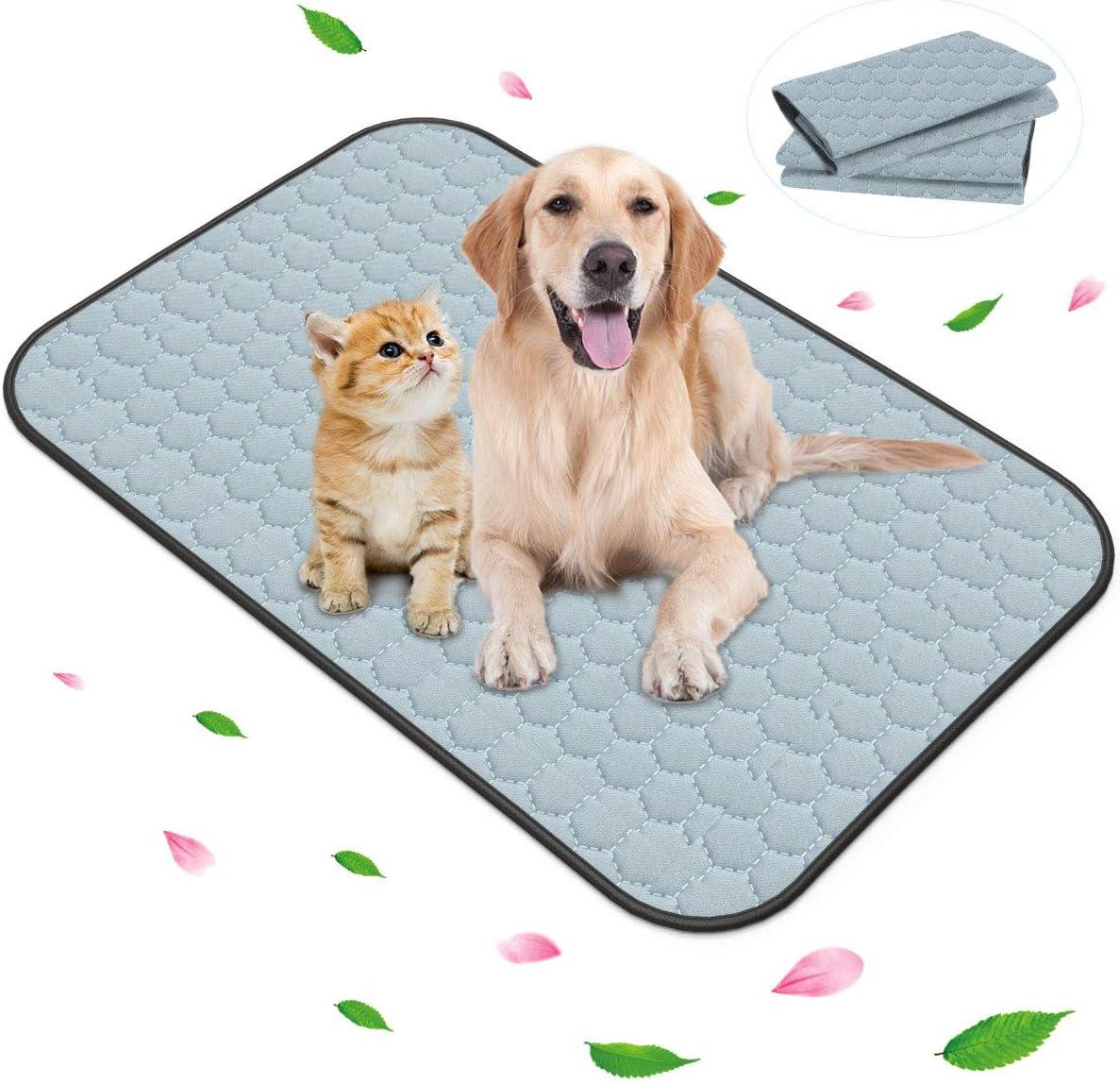 Pack of 30 Ultra Absorbent Pet Pee Training Pads//Leak-proof Anti Slip Mats//Multi Pack Offers- Keraiz 60x60 cm Puppy Pads//Thick