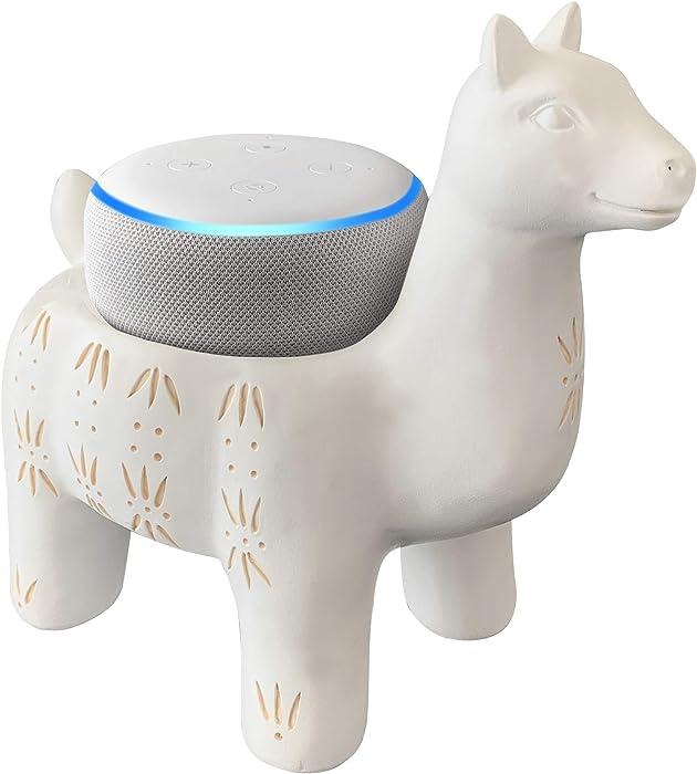 The Best Google Echo Home
