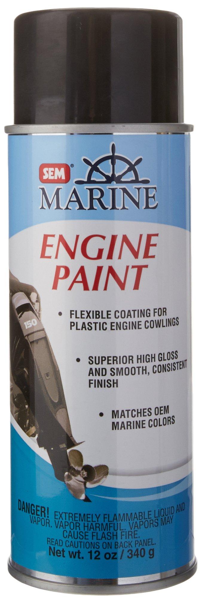 SEM M25513 Mercury Phantom Black Engine Paint - 12 oz.
