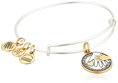 d97713944681bc Alex and Ani Women's Hand in Hand II, Two Tone EWB Bangle Bracelet,  Rafaelian