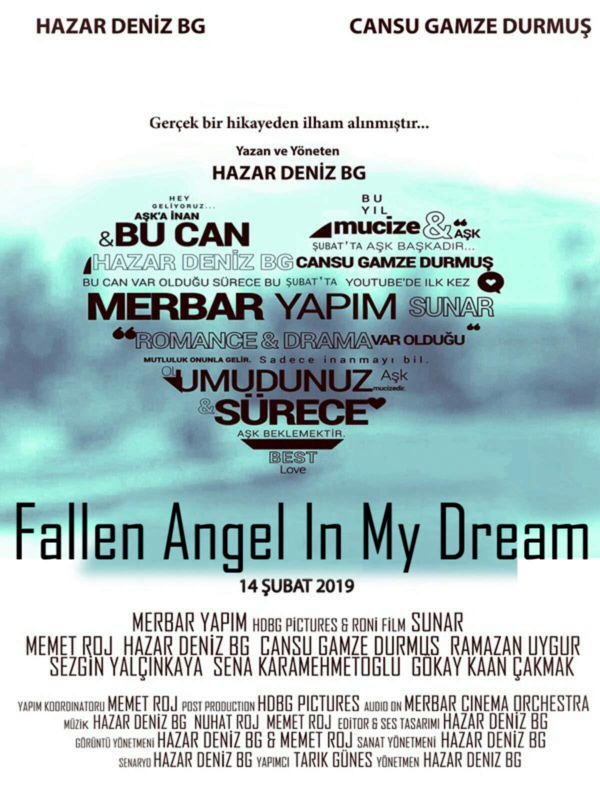 Fallen Angel in My Dream