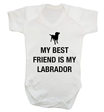 My Best Friend Is My Labrador Baby Vest Bodysuit Babygrow Amazon Co
