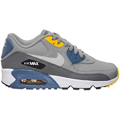 : Nike Youth Air Max 90 LTR Leather Wolf Grey