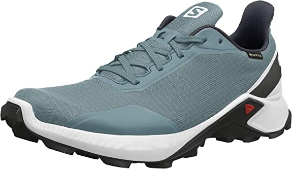 Salomon Alphacross GTX Zapatillas De Trail Running Impermeable Para Hombre: Amazon.es: Zapatos y complementos