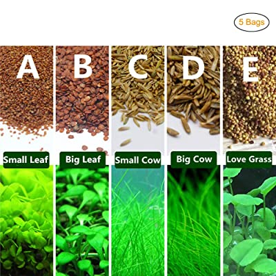 5 Bags of Water Grass Seed Package Fish Tank Decoration : Garden & Outdoor
