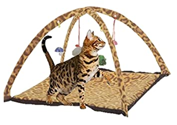 Cat Tent Leopard Print Cat Play Mat Tent With hanging Toys  sc 1 st  Amazon UK & Cat Tent Leopard Print Cat Play Mat Tent With hanging Toys: Amazon ...